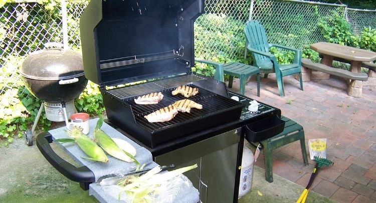 2020 Review Guide On Weber Grills Check Them Out