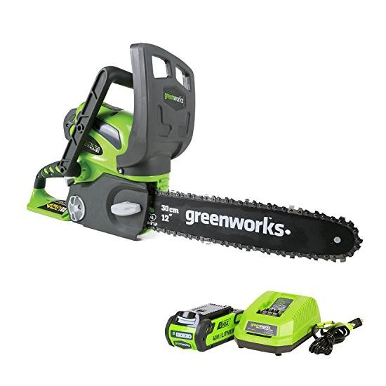 Greenworks 12 Inch 40V Cordless Chainsaw Image