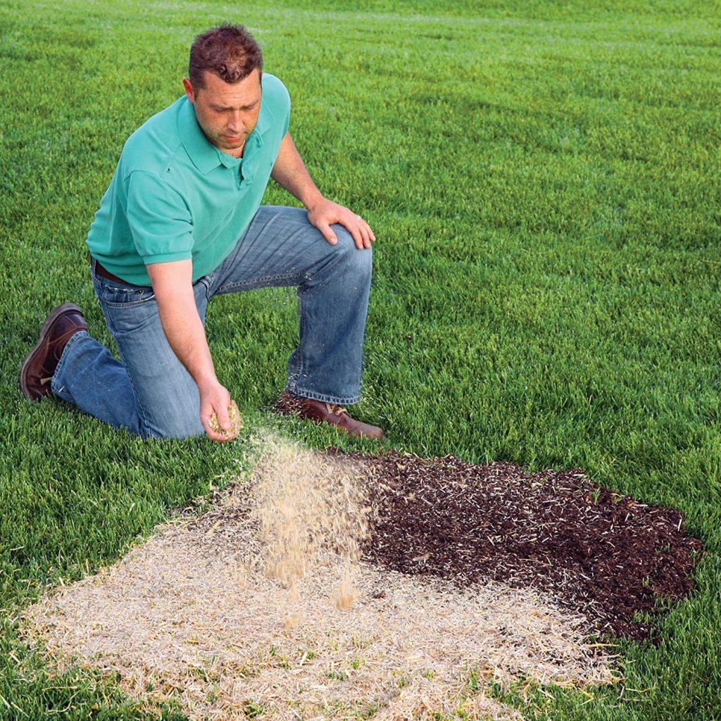EZ-Straw Seeding Mulch with Tack