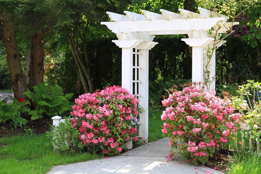 Best Garden Arbor Review Guide For 2021-2022