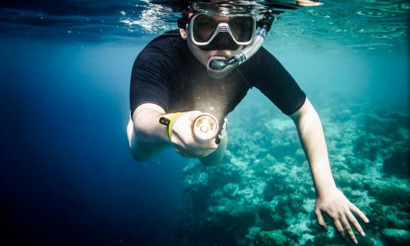 Best Dive Light Review Guide For 2020