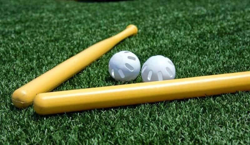 Best Wiffle Ball Bat Review Guide For 2020-2021