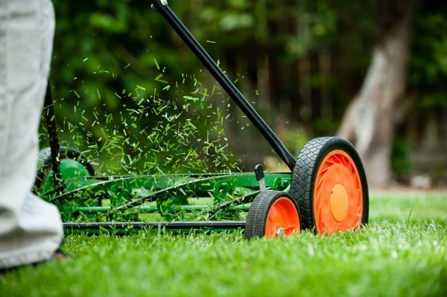 Best Reel Mower Review Guide For 2020-2021