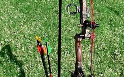 Best Bow Stand Review Guide For 2021-2022