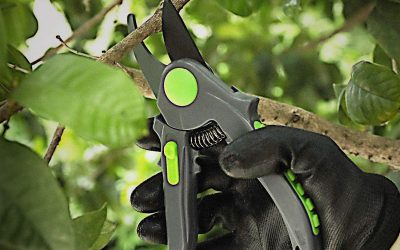 The Very Best Vivosun 1-Pack Gardening Hand Pruner Pruning Shear Review Guide For 2021-2022