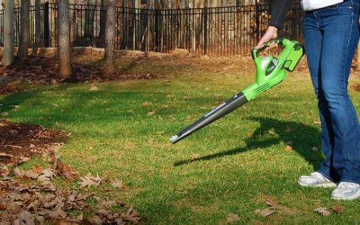 Best Cordless Leaf Blower Review Guide For 2021-2022
