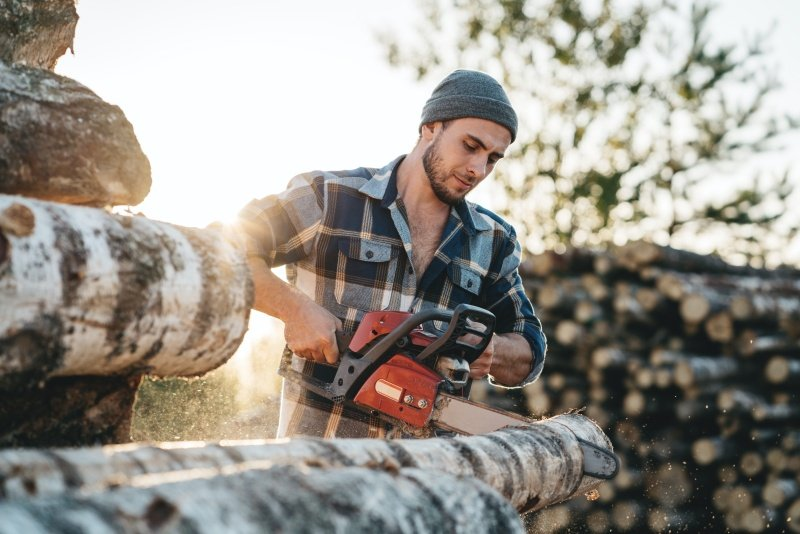 Best Smallest Gas Chainsaw Review Guide For 2021-2022