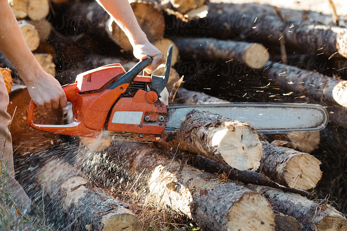 Best Chainsaws For Cutting Firewood Review Plus Buying Guide For 2021-2022