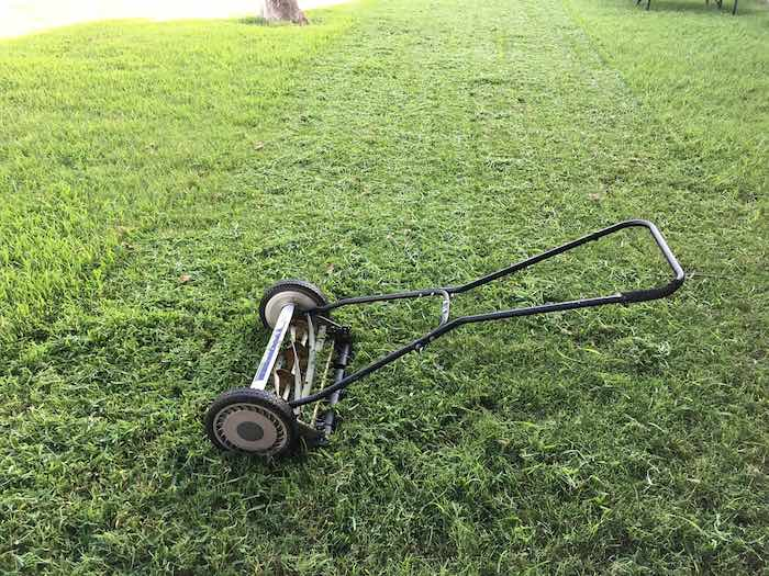 Top 6 Lawn Mowers for Zoysia Grass Review Guide For 2021