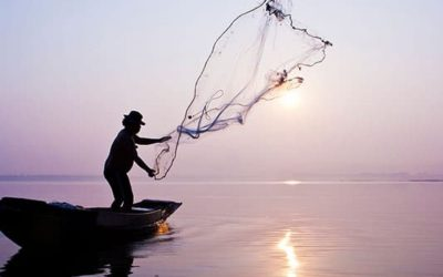 Most Popular Cast Nets Review Guide For 2021-2022