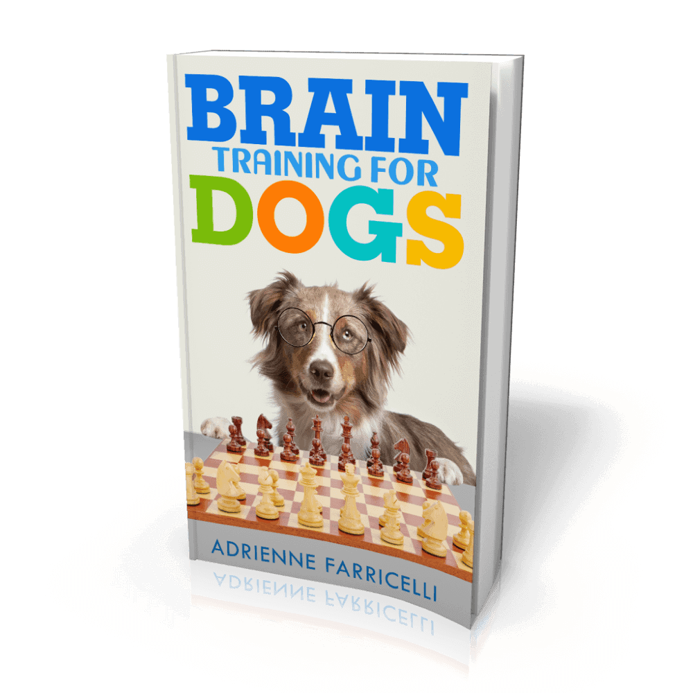 Detailed Report On Brain Training For Dogs Review Plus Buying Guide For 2021-2022