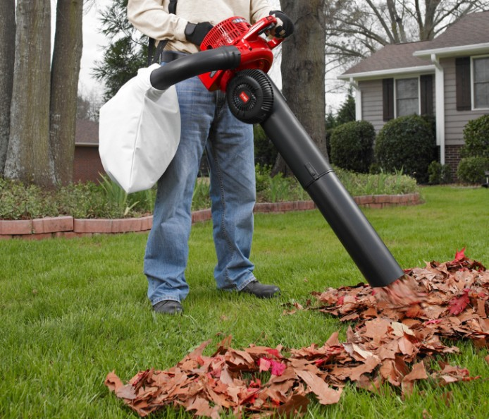 Best All Weather Toro 51619 Ultra Blower/Vac Review Guide For 2021