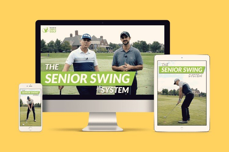 The Most Popular Simple Senior Swing System Review Guide For 2021-2022