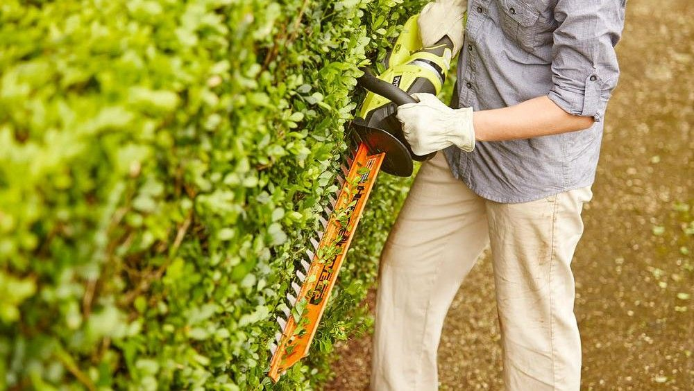 Top Of The Line Commercial Hedge Trimmer Review Guide For 2021