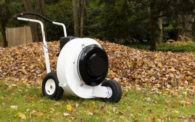 Best Walk Behind Wheeled Leaf Blower Review Guide For 2021-2022
