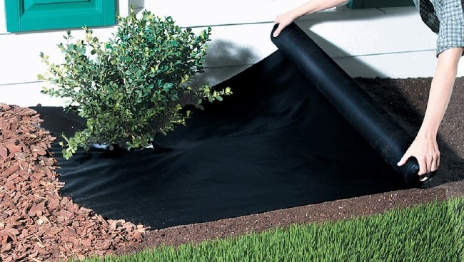 Best Landscape Fabric Review Guide For 2021-2022