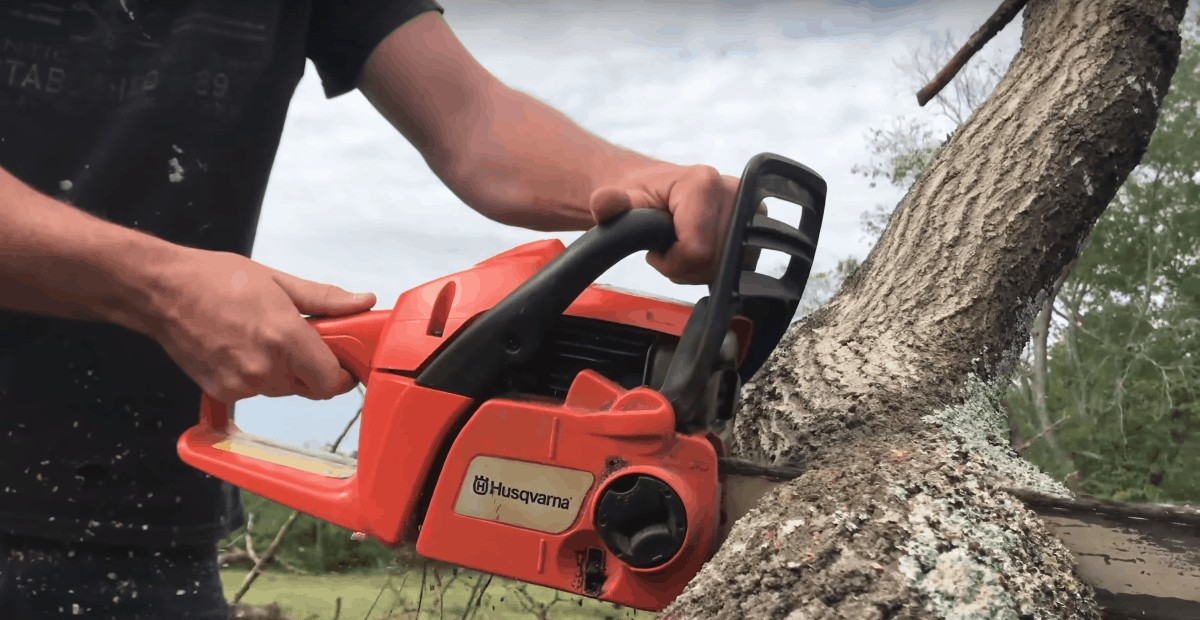 Best Top Handle Chainsaws Review Guide For 2021-2022