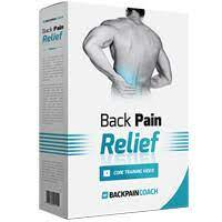 Best Back Pain Relief 4 Life Review Guide For 2021-2022