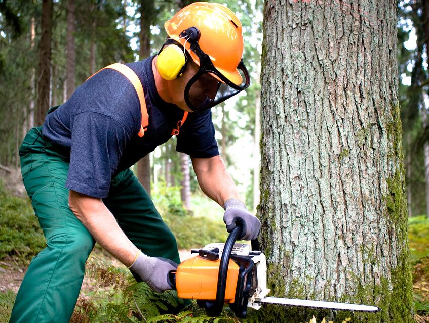 Top Best Chainsaw Helmets Review Guide For 2021-2022